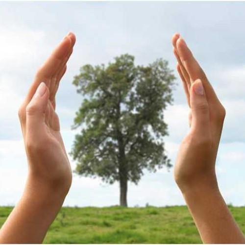 Grupa Velux stawia na niskoemisyjną i ekologiczną produkcję