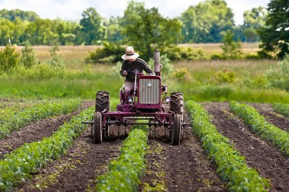 Resort rolnictwa chce od 2020 r. wyrównania dopłat unijnych dla rolników