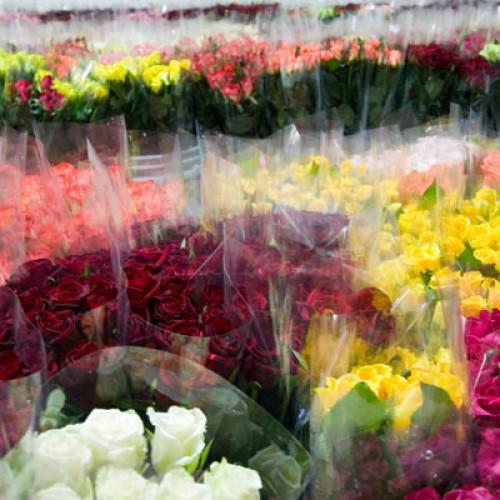 Czy warto założyć własną kwiaciarnie?