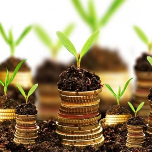 Ranking funduszy inwestycyjnych – grudzień 2014