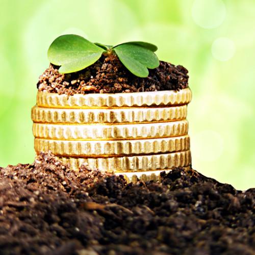 Wszystko o lokatach i obligacjach skarbowych